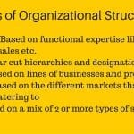 Know The Types of Organizational Structures In Business