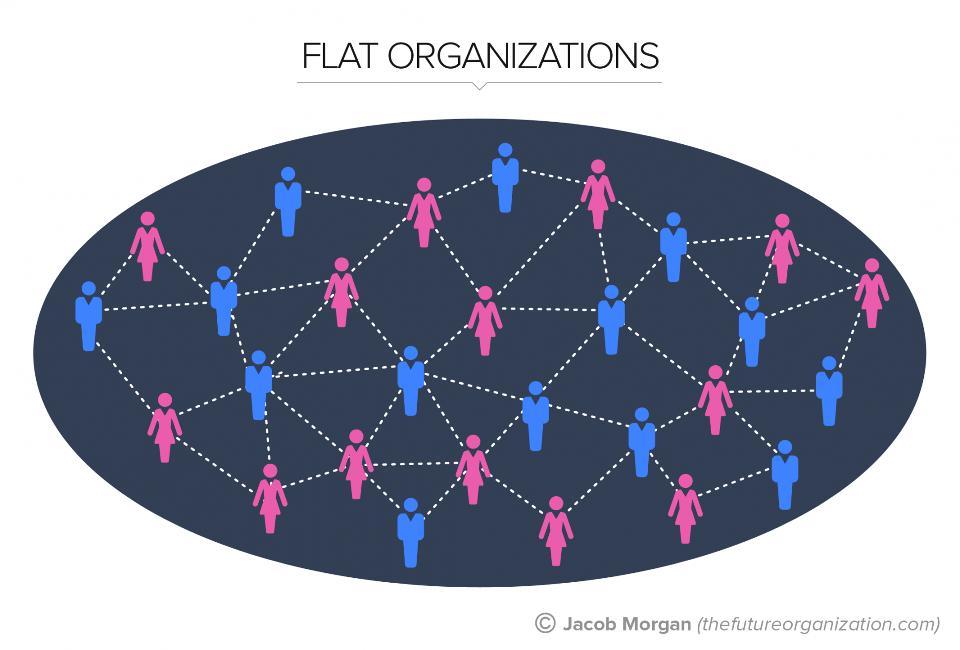 flatorganizationtypes-slide03-hires05-21-15-1940x1315mj