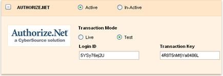 invoicera authorize_big