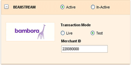 Payment for invoices through Bambora